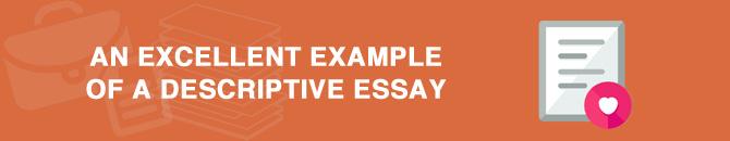 exellent essay paper
